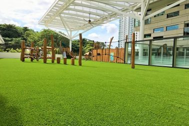 Supplier of high quality fitness equipment with artificial carpet grass in Singapore