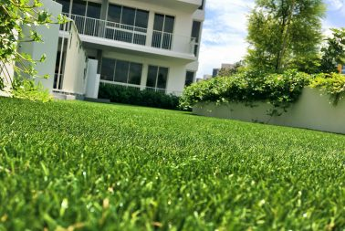 Singapore Supplier of Artificial Turf for residential gardens